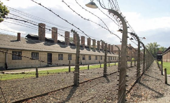 Auschwitz Self Guided Tour, Sightseeing