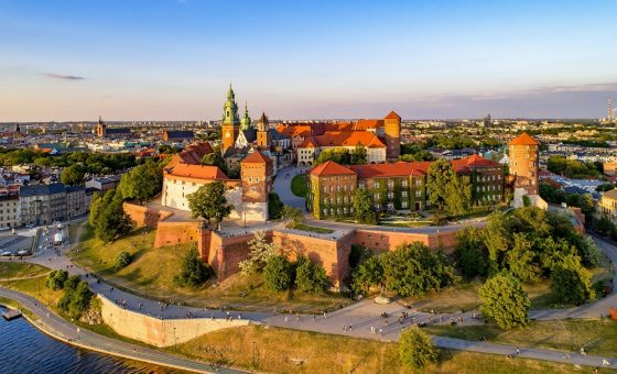 Wawel Private Guided Tour
